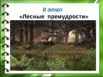 II этап «Лесные премудрости»