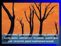 Освітлена ранковим сонцем в оранжевий колір дюна забезпечує чудовий задній фо...