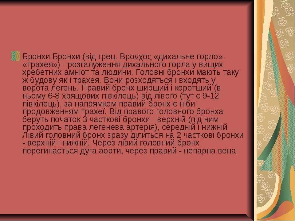 Бронхи Бронхи (від грец. Βρονχος «дихальне горло», «трахея») - розгалуження д...