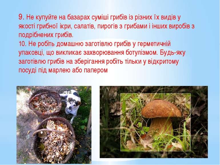 9. Не купуйте на базарах суміші грибів із різних їх видів у якості грибної ік...