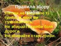 Ніколи не збирайте ті гриби, в яких ви сумніваєтесь. Не збирайте гриби біля д...