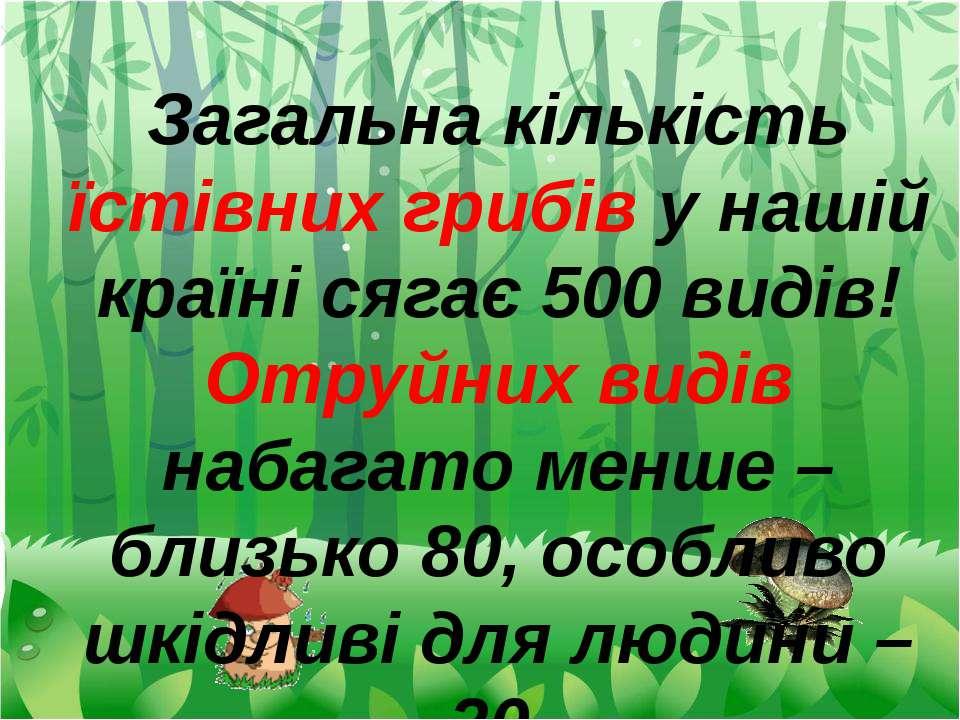 Загальна кількість їстівних грибів у нашій країні сягає 500 видів! Отруйних в...