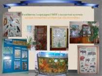 В кабінетах і коридорах ГВПУ є екологічні куточки працює екологічна агітбрига...