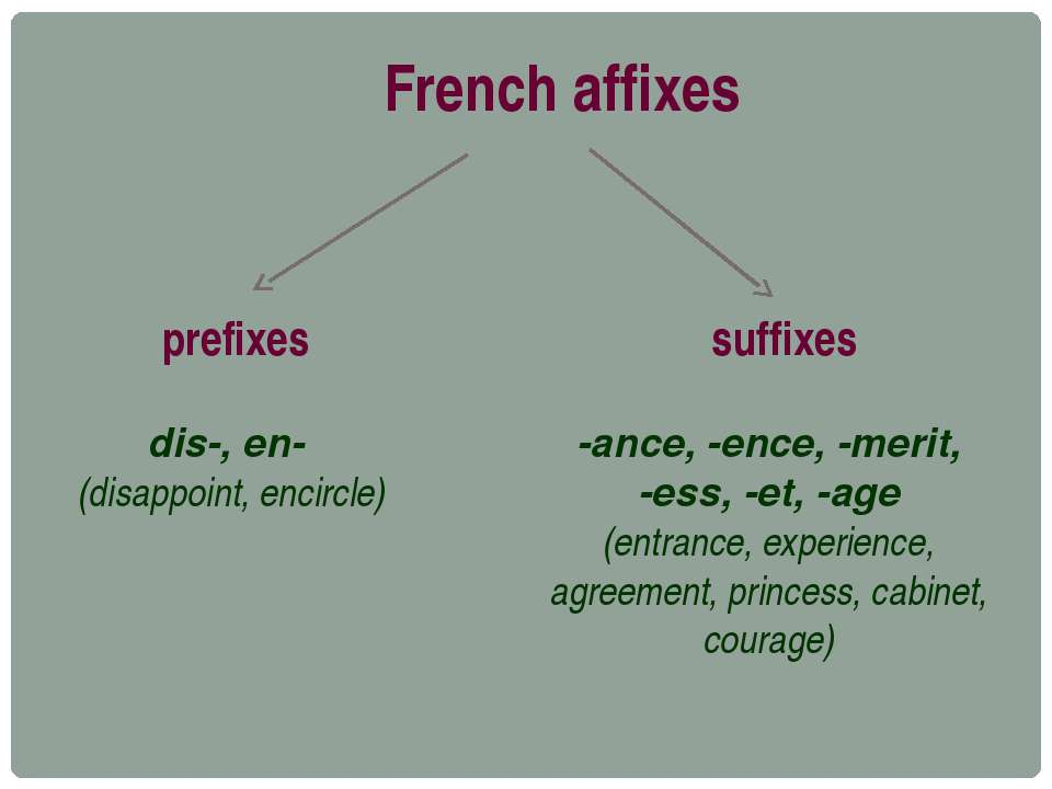 French affixes prefixes dis-, en- (disappoint, encircle) suffixes -ance, -enc...