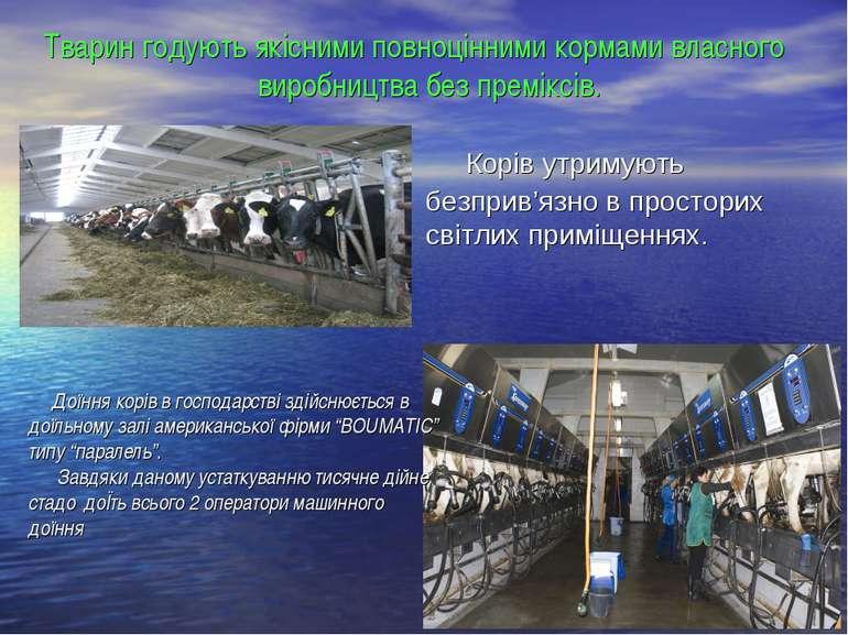 Тварин годують якісними повноцінними кормами власного виробництва без премікс...