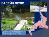БАСЕЙН ВІСЛИ До басейну Вісли відносяться річки Західний Буг і Сан.