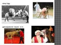 кінну їзду, дресирування тварин та ін.