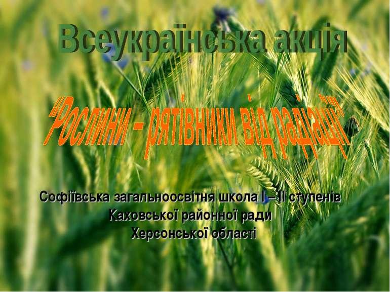 Софіївська загальноосвітня школа І – ІІ ступенів Каховської районної ради Хер...