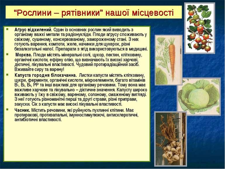 Аґрус відхилений. Один із основних рослин який виводить з організму важкі мет...