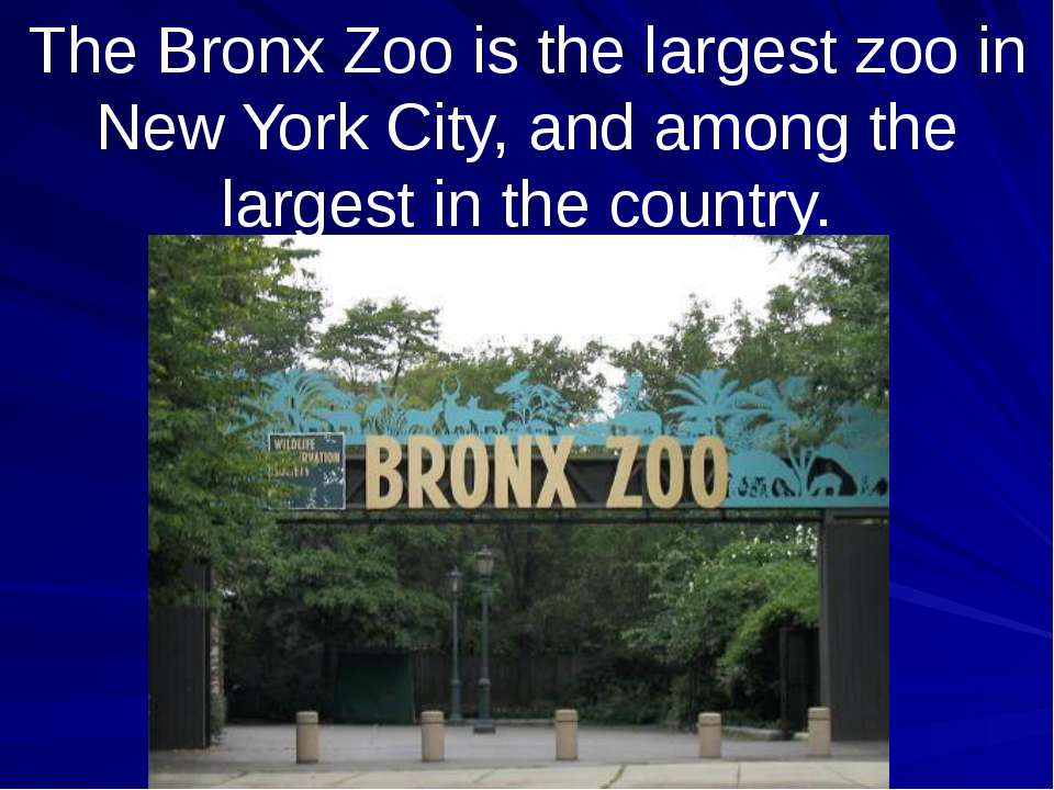 The Bronx Zoo is the largest zoo in New York City, and among the largest in t...