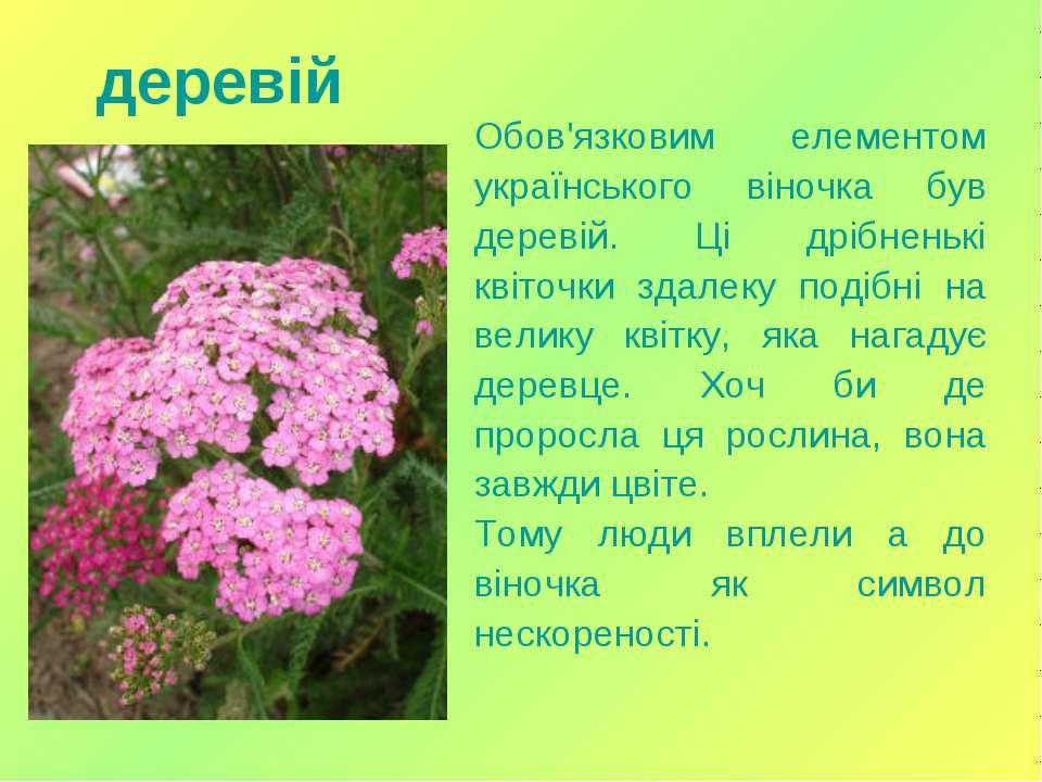 Обов'язковим елементом українського віночка був деревій. Ці дрібненькі квіточ...