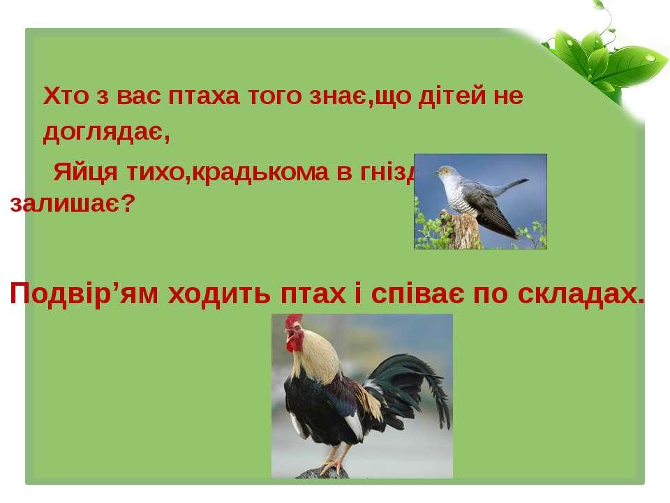 Хто з вас птаха того знає,що дітей не доглядає, Яйця тихо,крадькома в гніздах...