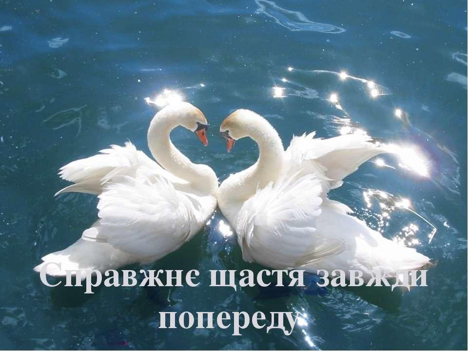Справжнє щастя завжди попереду
