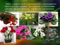 Квіти з давніх часів супроводжують і прикрашають життя та побут людини. Догля...