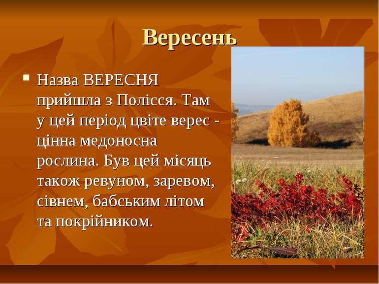 Вересень Назва ВЕРЕСНЯ прийшла з Полісся. Там у цей період цвіте верес - цінн...