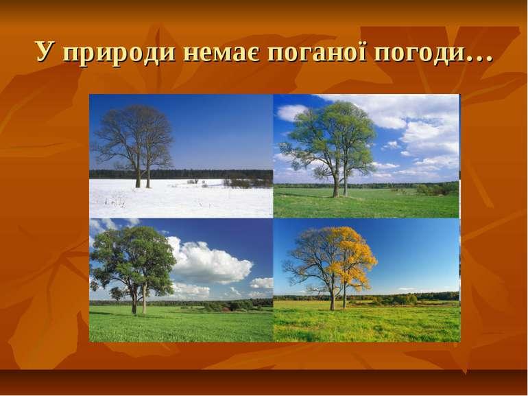 У природи немає поганої погоди…