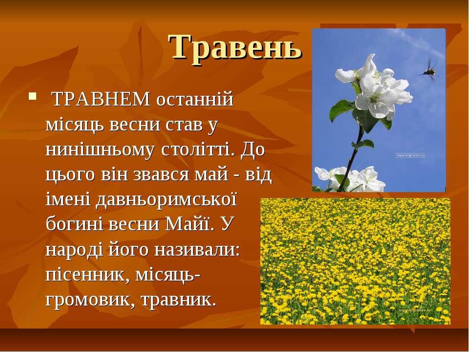 Травень ТРАВНЕМ останній місяць весни став у нинішньому столітті. До цього ві...