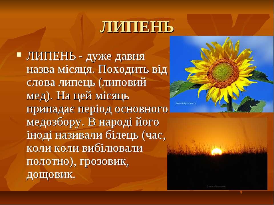 ЛИПЕНЬ ЛИПЕНЬ - дуже давня назва місяця. Походить від слова липець (липовий м...