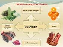 Нитраты в продуктах питания источники Растительные продукты Мясные продукты м...