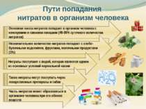 Пути попадания нитратов в организм человека Основная масса нитратов попадает ...