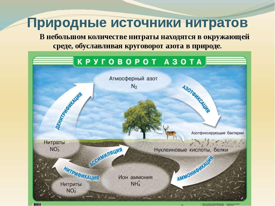 В небольшом количестве нитраты находятся в окружающей среде, обуславливая кру...