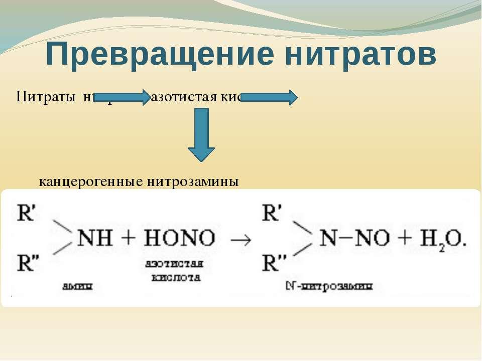 Нитраты нитриты азотистая кислота канцерогенные нитрозамины Превращение нитратов