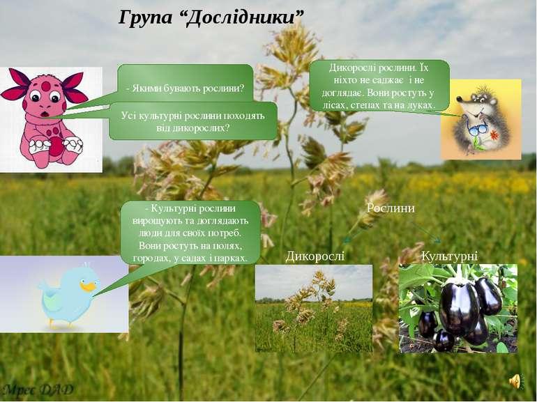 - Якими бувають рослини? Дикорослі рослини. Їх ніхто не саджає і не доглядає....