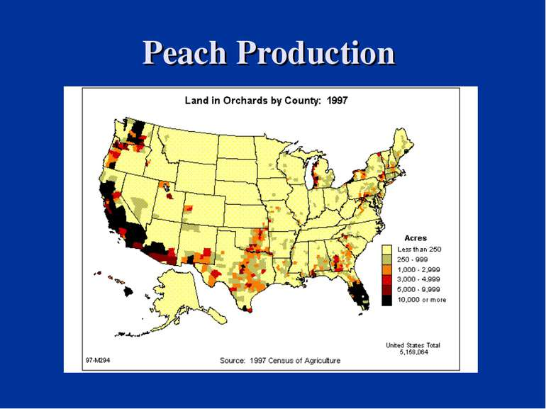 Peach Production