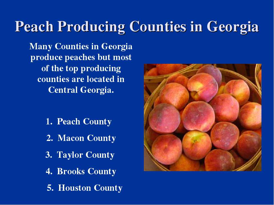 Peach Producing Counties in Georgia Many Counties in Georgia produce peaches ...