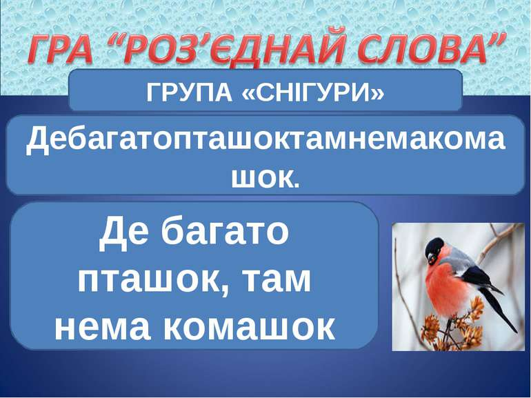 ГРУПА «СНІГУРИ» Дебагатопташоктамнемакомашок. Де багато пташок, там нема комашок