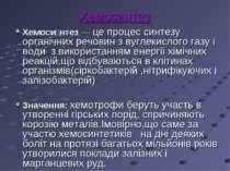 Хемосинтез Хемоси нтез — це процес синтезу органічних речовин з вуглекислого ...