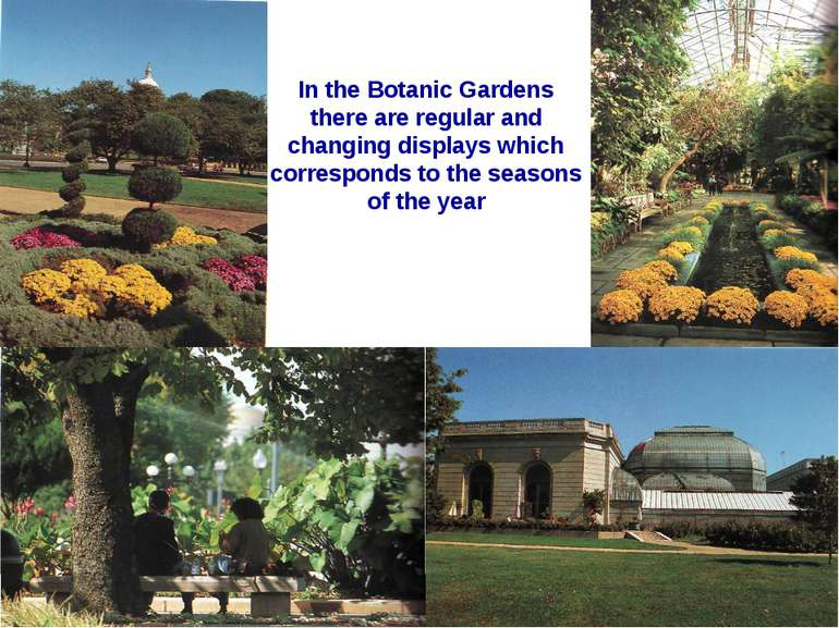 In the Botanic Gardens there are regular and changing displays which correspo...
