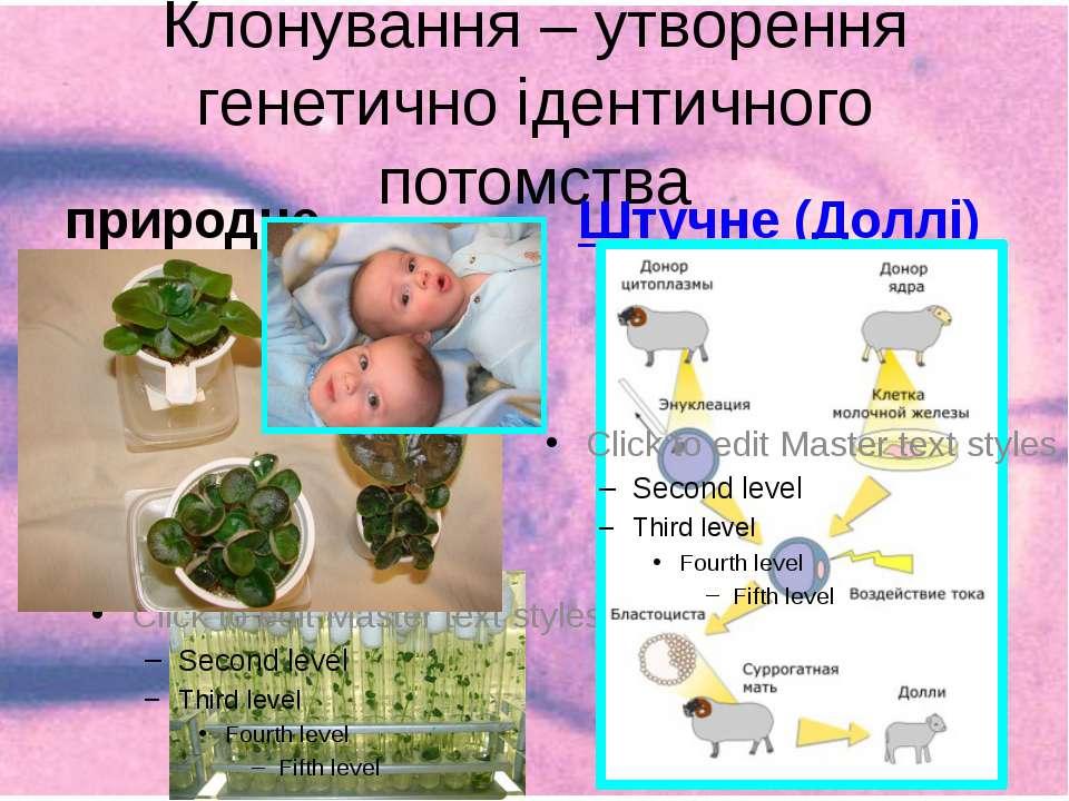 Клонування – утворення генетично ідентичного потомства природне Штучне (Доллі)