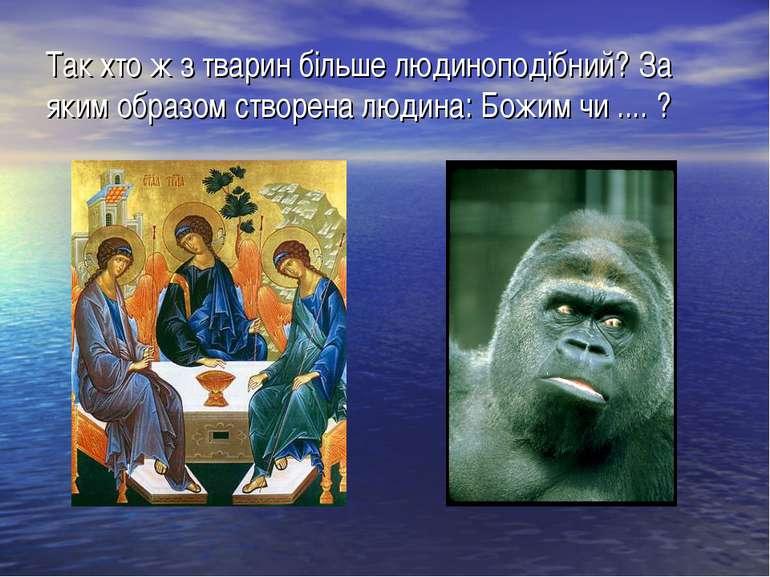 Так хто ж з тварин більше людиноподібний? За яким образом створена людина: Бо...