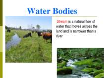 Water Bodies Stream is a natural flow of water that moves across the land and...