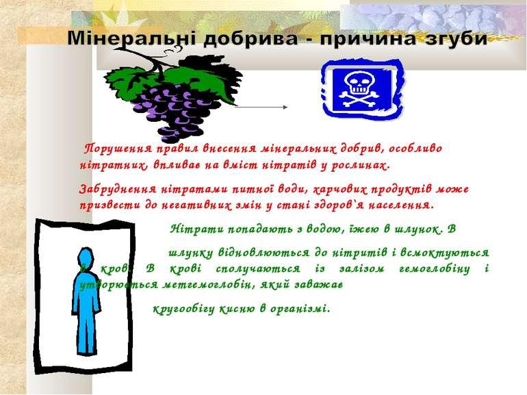 Порушення правил внесення мінеральних добрив, особливо нітратних, впливає на ...