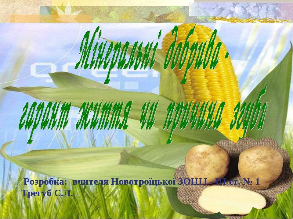 Розробка: вчителя Новотроїцької ЗОШ І –ІІІ ст. № 1 Трегуб С.Л.