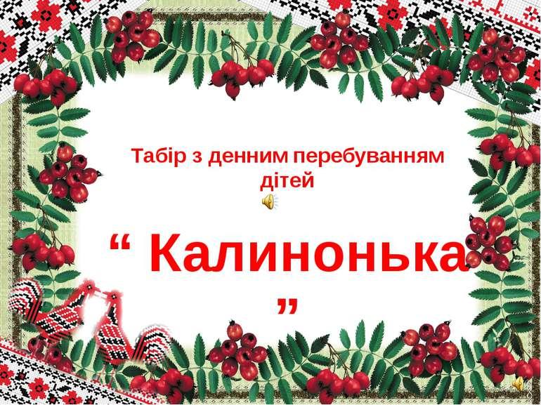 """Табір з денним перебуванням дітей """" Калинонька """" Лицьова сторінка """" Калиноньки """""""