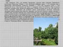 Корсунь-Шевченківський парк — парк-пам'ятка садово-паркового мистецтва загал...