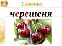 черешеня Словник: