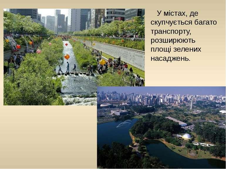 У містах, де скупчується багато транспорту, розширюють площі зелених насаджень.