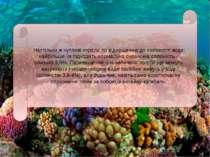 Настільки ж чутливі корали по відношенню до солоності води: найбільше їм підх...
