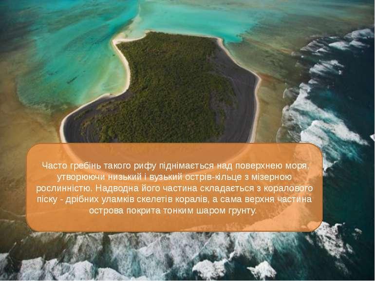 Часто гребінь такого рифу піднімається над поверхнею моря, утворюючи низький ...