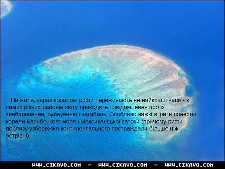На жаль, зараз коралові рифи переживають не найкращі часи -з самих різних ра...