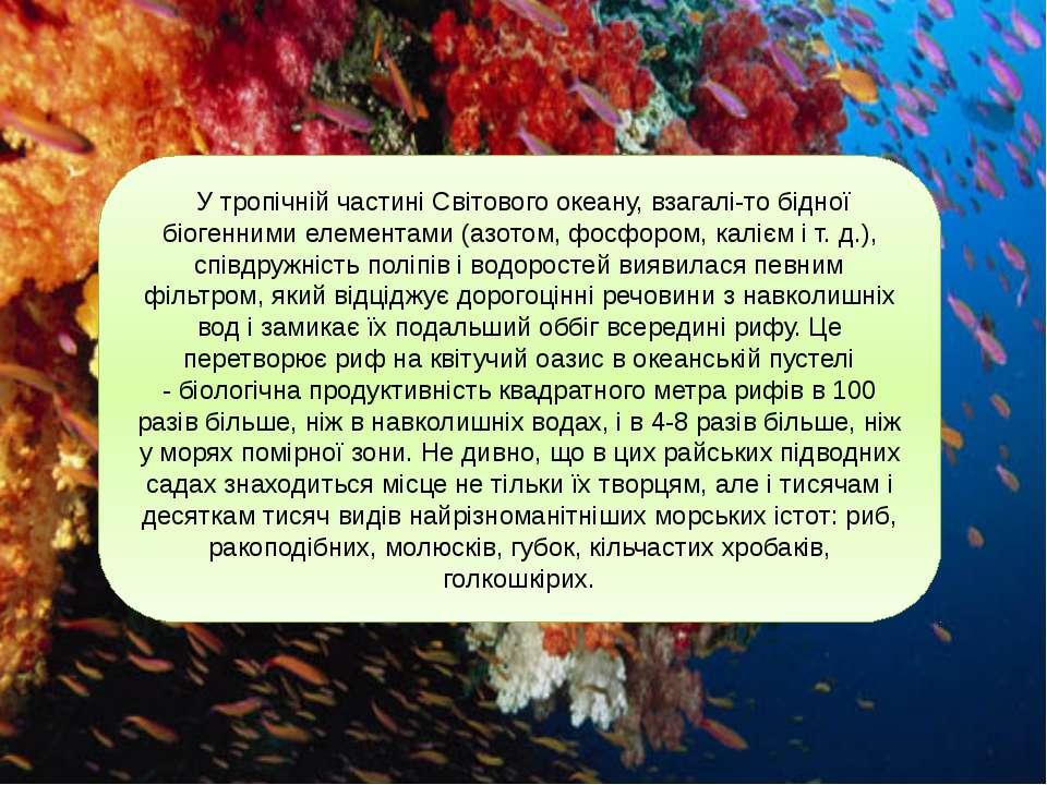 У тропічній частині Світового океану, взагалі-то бідної біогенними елементами...