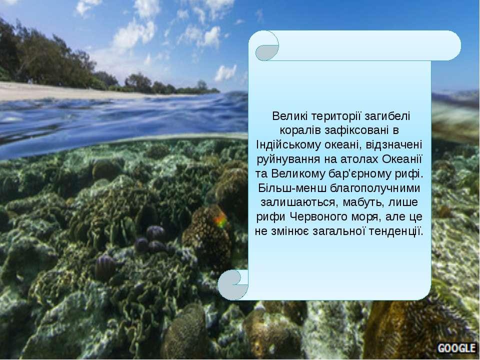 Великітериторії загибелі коралів зафіксовані в Індійському океані, відзначен...
