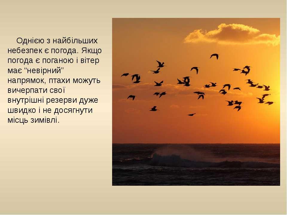 """Однією з найбільших небезпек є погода. Якщо погода є поганою і вітер має """"нев..."""