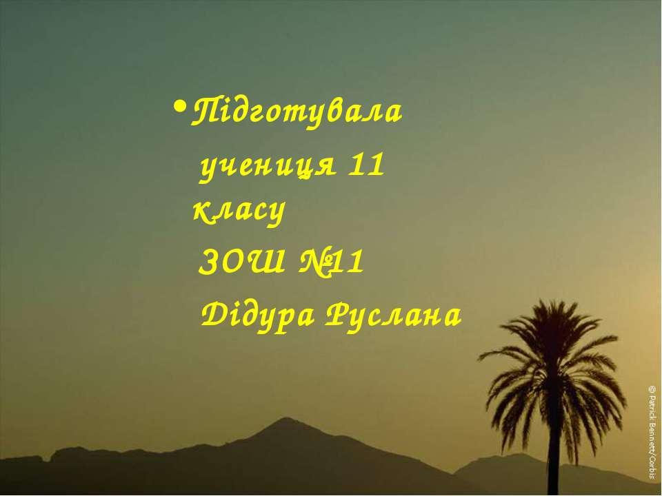 Підготувала учениця 11 класу ЗОШ №11 Дідура Руслана