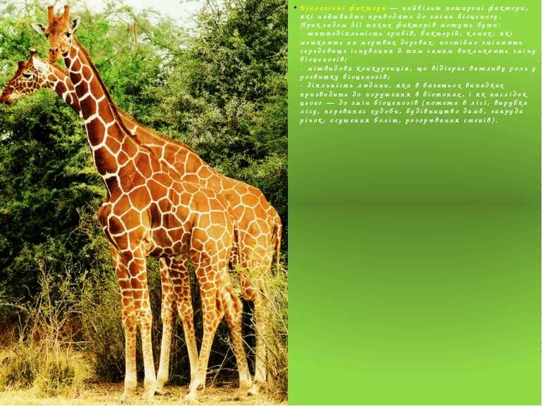 Біологічні фактори — найбільш поширені фактори, які найшвидше приводять до зм...