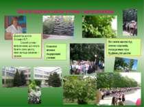 Школа вдячна своїм учням і випускникам Директор школи Сосєдко В.П. : Спасибі ...